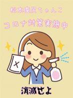 コロナ対策さん(長野ちゃんこ 松本塩尻店)のプロフィール画像